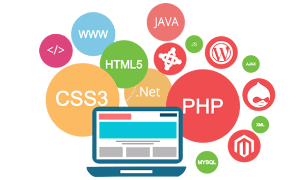 website-development-in-vietnam