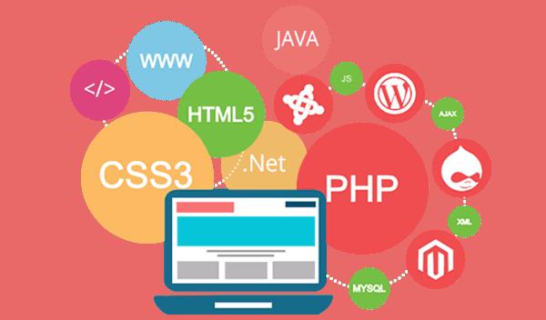 website-development-in-vietnam