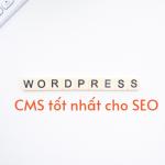 10-ly-do-wordpress-la-cms-tot-nhat-cho-seo