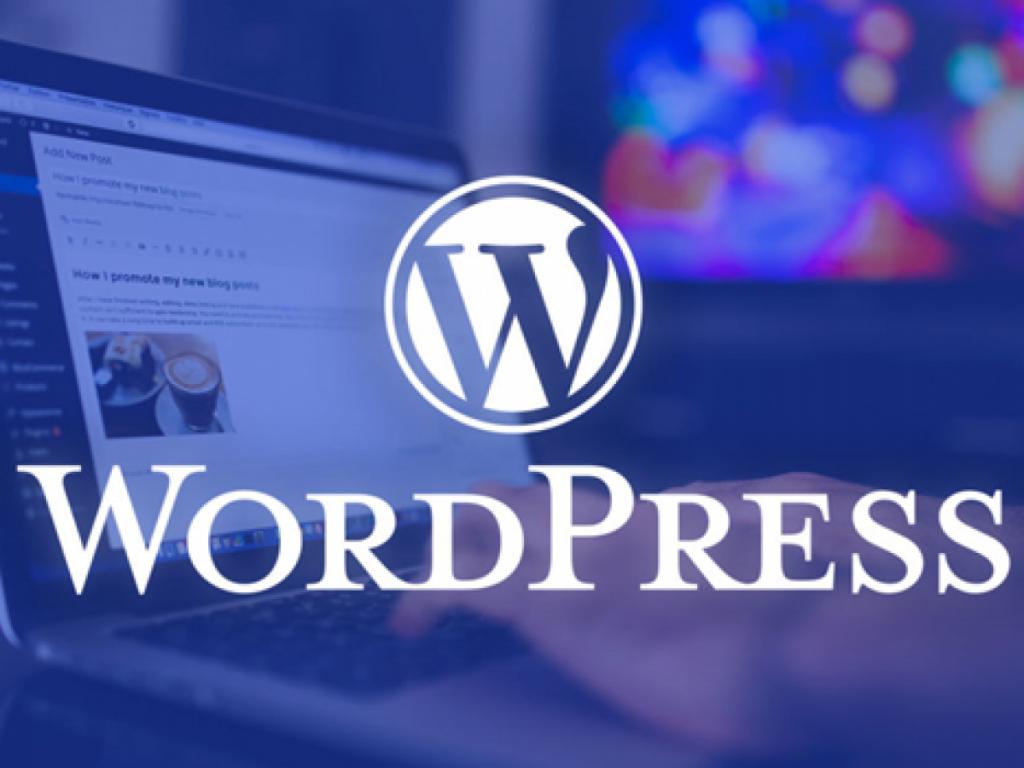 cong-cu-seo-wordpress