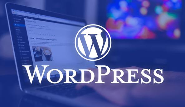 hinh-anh-word-press